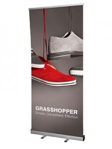 Grasshopper_Large