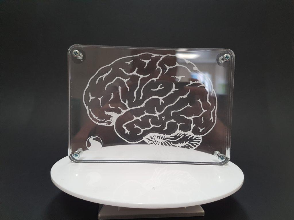 Acrylic Engraved Brain