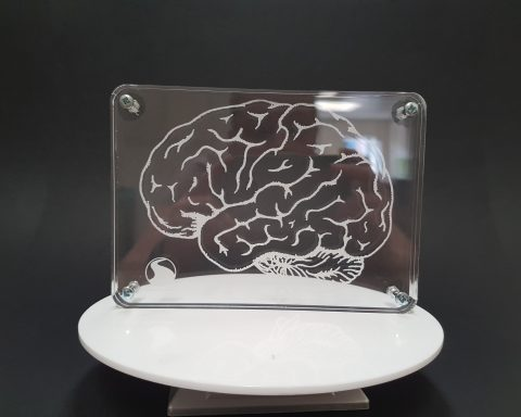 Acrylic Engraved Brain